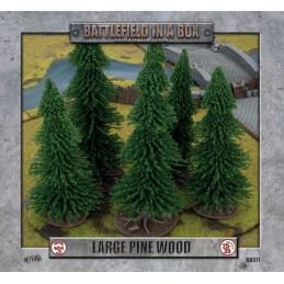 Grande forêt de pins