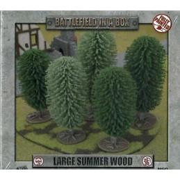 Grande forêt d'été